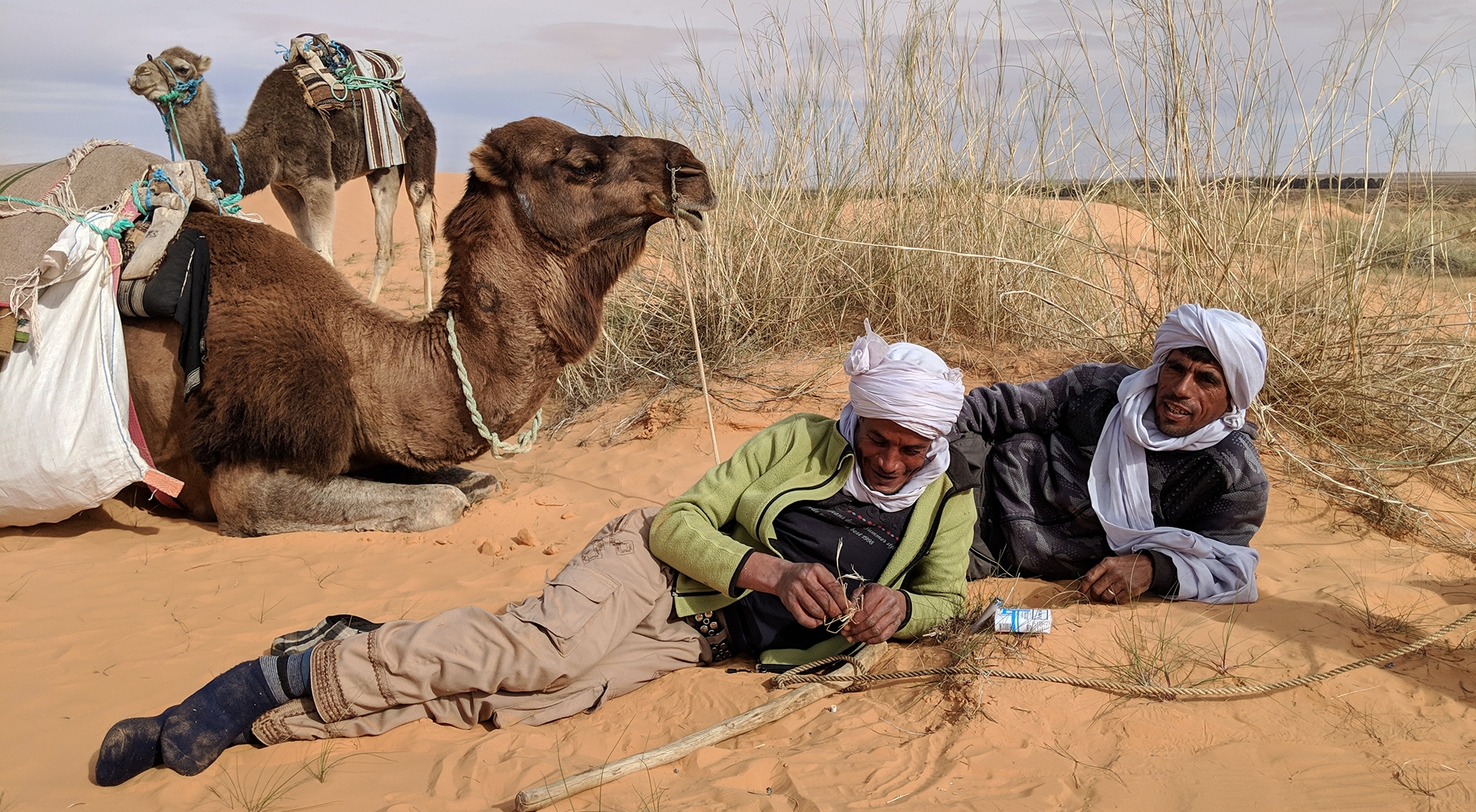 Тунис - живот в Сахара